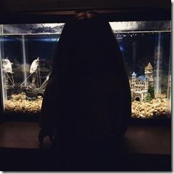 18 - AA In the Dark
